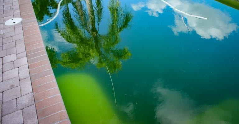 Why Is My Pool Water Green?